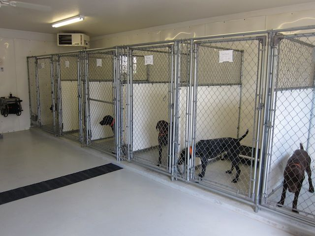 Kennel Sharp Shooter S Kennel